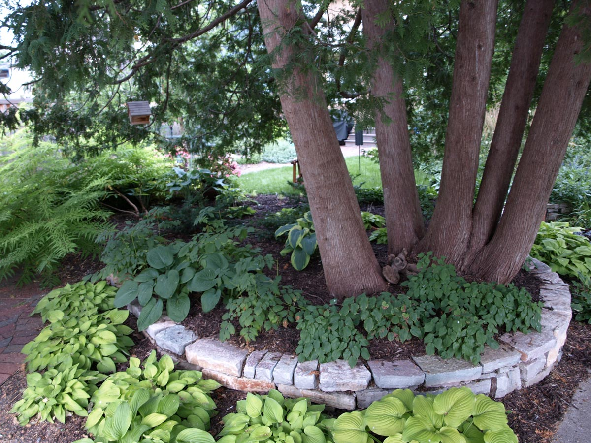 city woodland garden