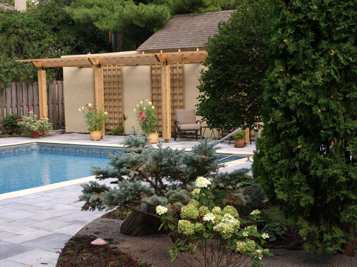 zen plantings pool