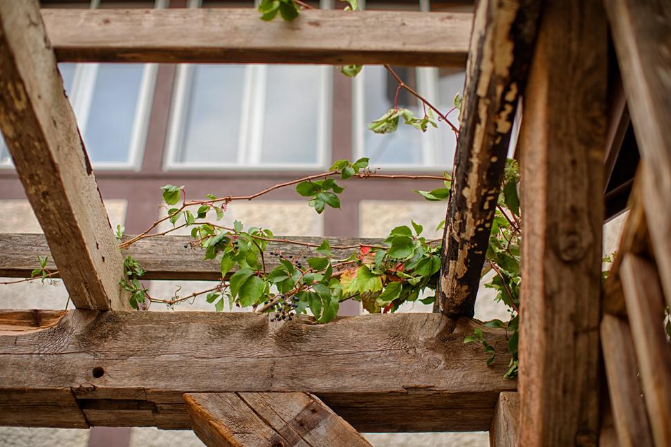pergola barn wood