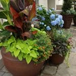 How To Decorate Your Home with Fall Containers