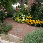 Perennials vs. Annuals: What's the Difference?