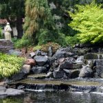 Top 3 Ways To Create A Sustainable Landscape