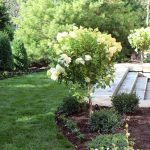 Benefits Of Enhancing Your Garden: Enhance Your Life